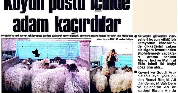 Türkiye'den Fantastik gazete haberleri