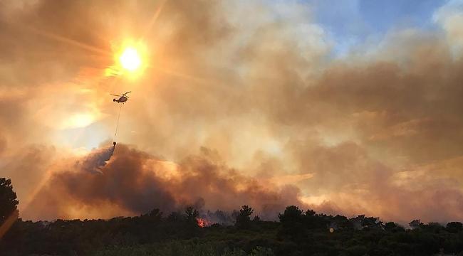 AFAD orman yangınlarına dikkat çekti
