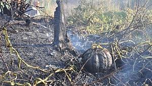 Bayramiç'te yangın