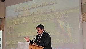 Uluslararası Çeltik Çalıştayı düzenlendi
