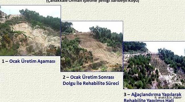 Maden sahaları ağaçlandırılarak doğaya yeniden kazandırılıyor
