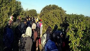 302 kaçak göçmen yakalandı