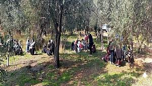 430 kaçak göçmen yakalandı