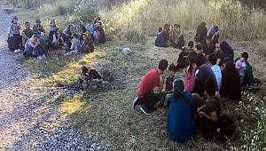 Jandarmadan kaçak göçmen operasyonu