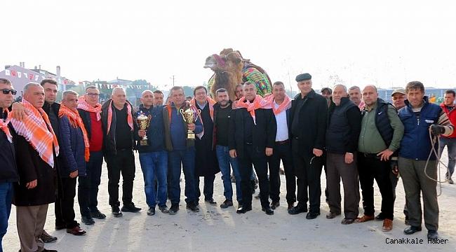 Kepez'de şenlik havasında deve güreşleri