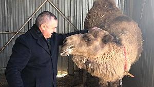 Başkan Oruçoğlu'ndan tepki