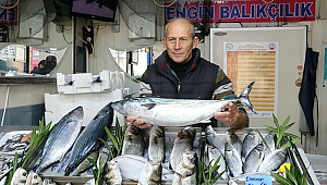 Balık çeşidi arttı, fiyatlar ucuzladı
