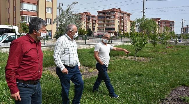 Daha yeşil bir kent için çalışmalar sürüyor
