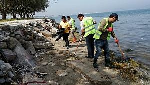Kepez'de sahil temizliği