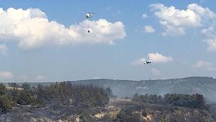 Çanakkale'de orman yangını 3