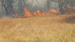 Çanakkale Kumkale'de yangın