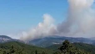 Çanakkale Yenice'de yangın ! 2