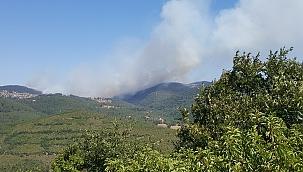 Çanakkale Yenice'de yangın ! 3