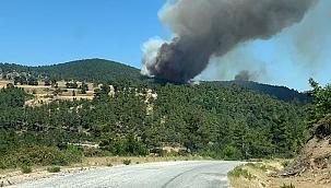 Çanakkale Yenice'de yangın !