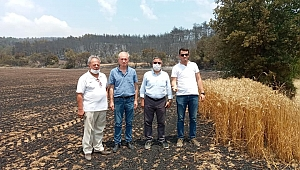 CHP heyeti yanan alanları inceledi