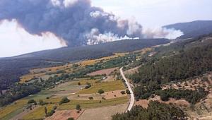 Gelibolu'da büyük yangın