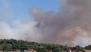 Kemel Köyünde orman yangını!!