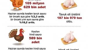 Haziran'da tavuk eti üretimi 187 bin 979 ton !