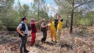 Karabiga'da 'Dumansız yangın' mücadelesi