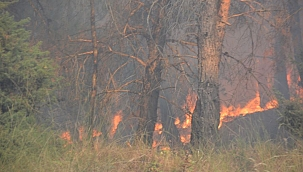 Kemel Köyü'nde yangın ! 2