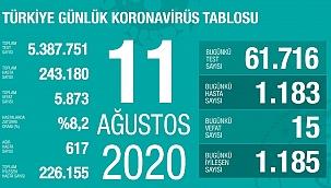Türkiye 11Ağustos koronavirüs tablosu