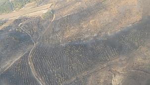 Gelibolu'da yangın 3