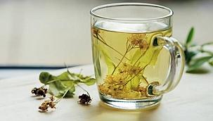 Sağlığınız için kaliteli bitki çaylarını tüketin