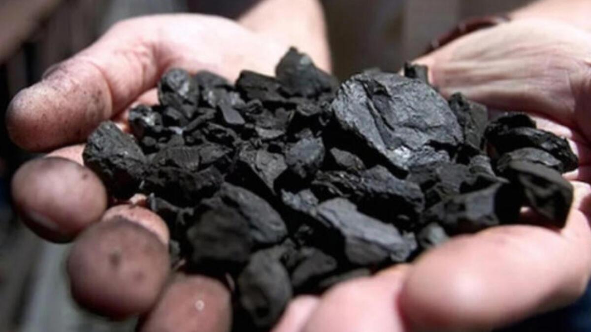 Biga ve Lapseki'de 355 bin ton kömür