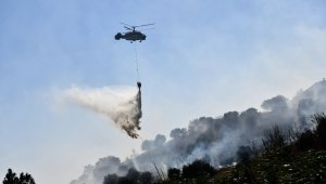 Aydın'da 2020 yılında 68 orman yangını meydana geldi
