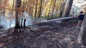 Düzce'de Kasım ayında 5 orman yangını söndürüldü