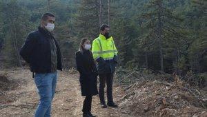 Kaymakam Yazıcı orman tensil çalışmalarını inceledi