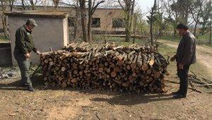 Kırşehir'de, orman alanlarında 2 yılda 1 milyon 600 bin lira gelir sağlandı
