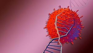 Korkutan yeni virüs alarmı: B117