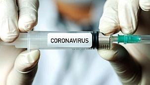 Koronavirüs aşısı yaptıranlar timsaha dönüşebilir