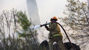Pandemi döneminde 813 hektar alan yandı