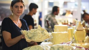 Peynir için online atölye