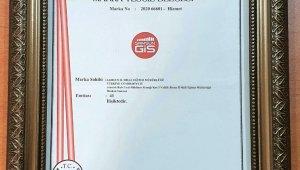 Samsun Öğrenci Gelişim İzleme ve Geri Bildirim Sistemi 'SAMGİS' markalaştı