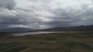 Suları çekilen baraj gölü tarım alanına döndü