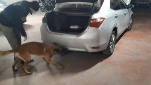 Vites kutusuna saklanan uyuşturucuları narkotik köpeği Galya böyle buldu