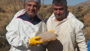 Bitlis'e tarımsal ve hayvansal ürünlerden 2,5 milyar TL girdi sağlandı