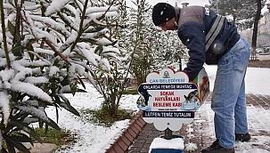 Çan Belediyesi de karda can dostlarını unutmadı