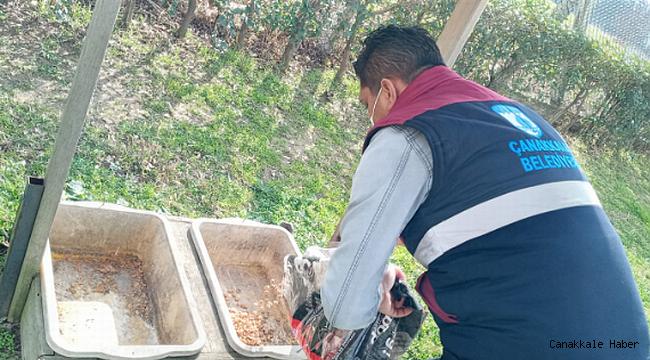 Çanakkale belediyesi sokak hayvanlarını yalnız bırakmıyor