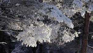 Çanakkale'den büyüleyici kar manzaraları