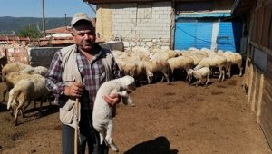 Isparta'da 272 köylüye 7 milyon 134 bin TL Orköy kredi desteği sağlandı