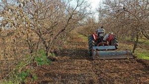 İzmir'de kısıtlamaya rağmen tarlalarda üretim devam etti