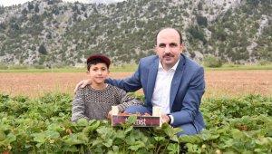 Konya Büyükşehir'den 2020'de çiftçilere 7 milyon lira destek