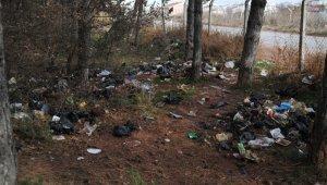 Ormanlık alan çöplüğe dönüştü
