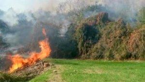 Osmaniye'de fundalık alanda başlayan yangın ormana sıçramadan söndürüldü