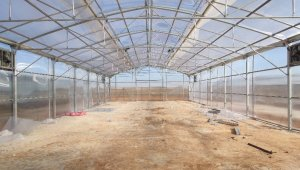 Şanlıurfa'da sebze ve meyve kurutma tesisi