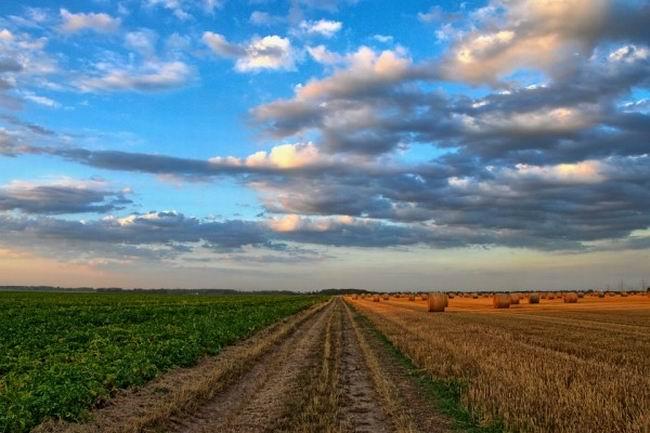Dijital Tarım Çözümü ile sürdürülebilir tarım